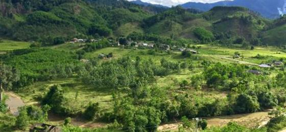 Landscapes near the Lao border, A Lưới district, Vietnam, showing natural forest on the background ridges, acacia plantations in